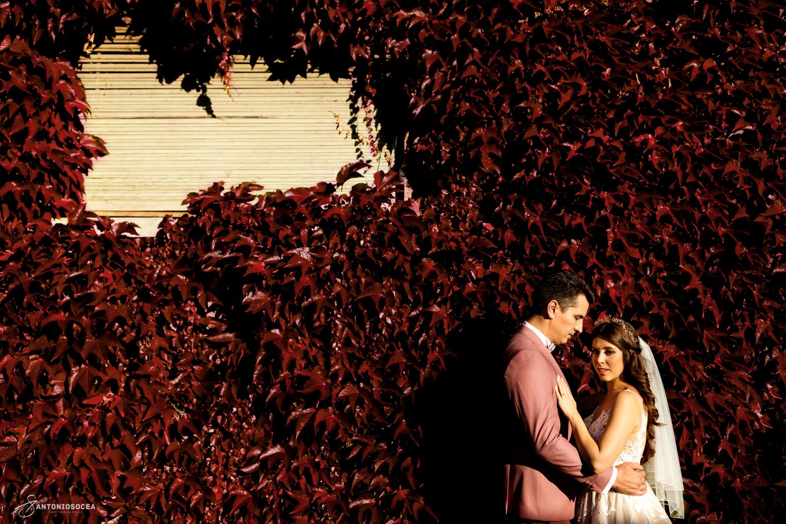 Fotograf Profesionist de nunta Bucuresti- Antonio Socea - Wedding photographer-Sedinta foto nunta